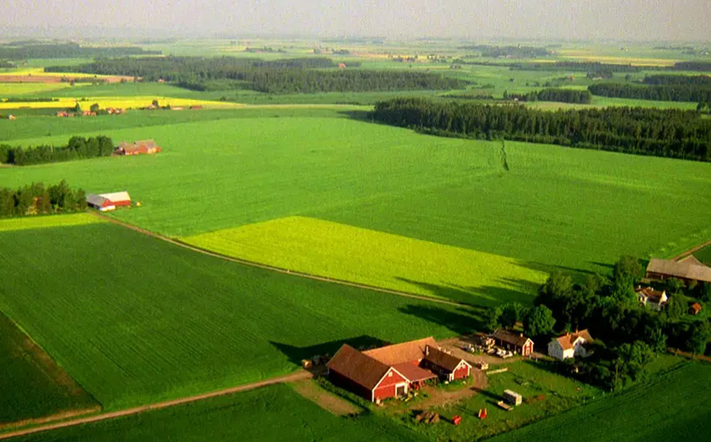 lantbruk ICA Norrmejerier